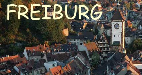 freiburg germany summer camp amp language immersion program